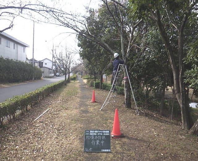 見沼元圦公園内 作業中