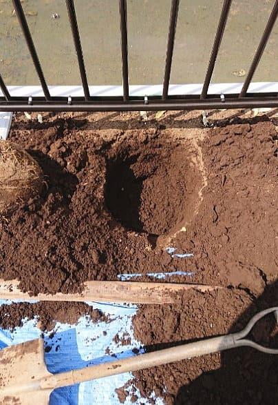 遊歩道沿いの植桝に穴を掘り