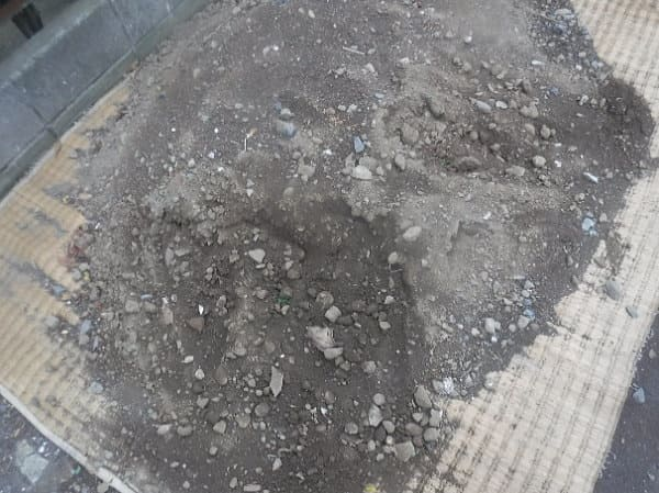 地盤はかなり固く、土にも養分がないような状態