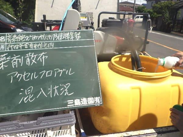 ソメイヨシノクビアカツヤカミキリ幼虫の食入防止に高い効果の農薬